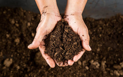 Faire son propre compost